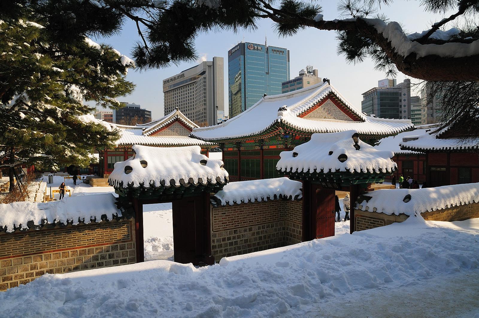 Зимняя природа южной кореи картинки